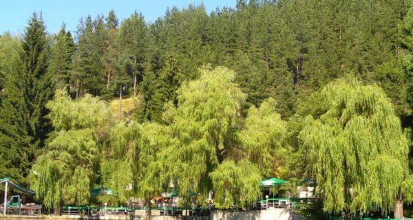 Клептуза езеро3